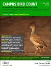 2015 Campus Bird Count poster thumbnail