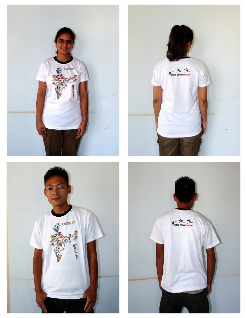 Endemic-tshirt-composite