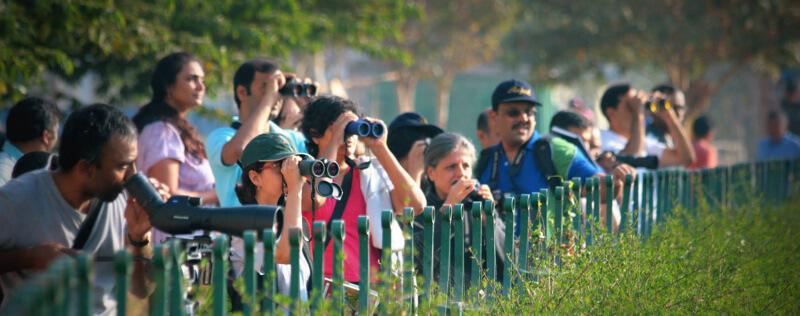 Birdwatchers in Bengaluru